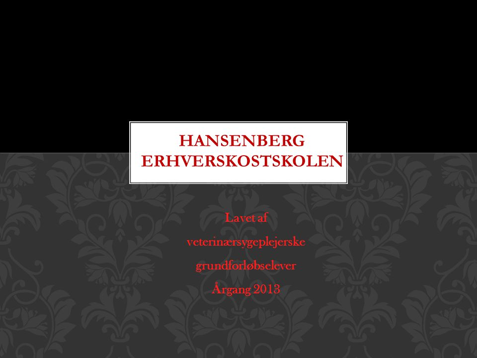 Hansenberg Erhverskostskolen