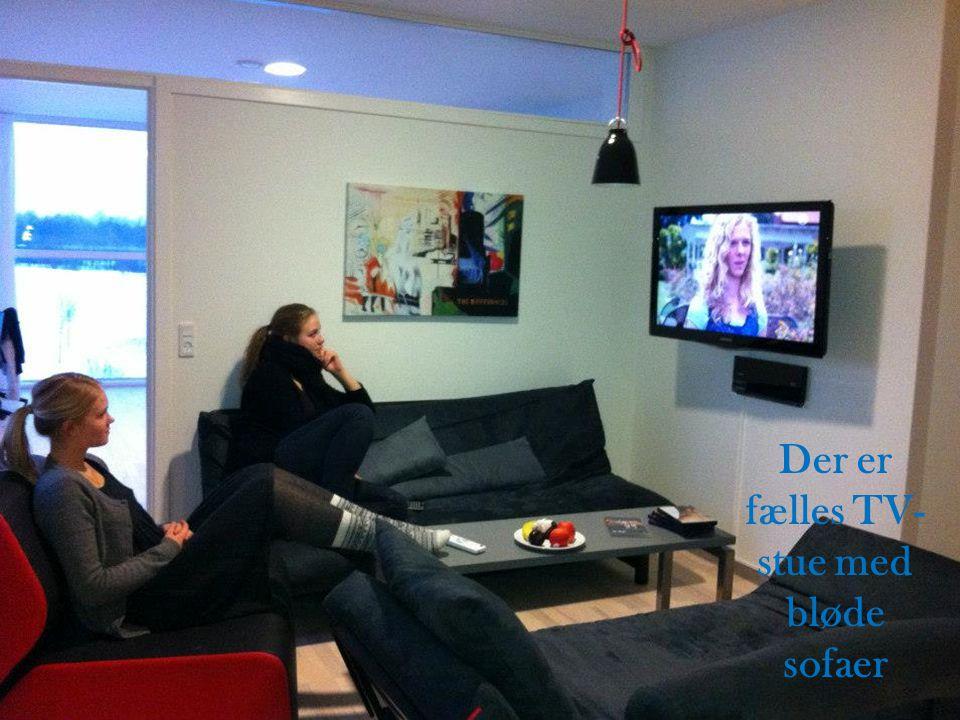 Der er fælles TV-stue med bløde sofaer