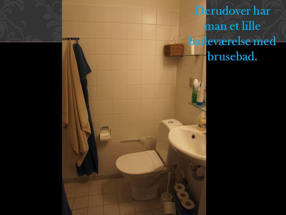 Derudover har man et lille badeværelse med brusebad.