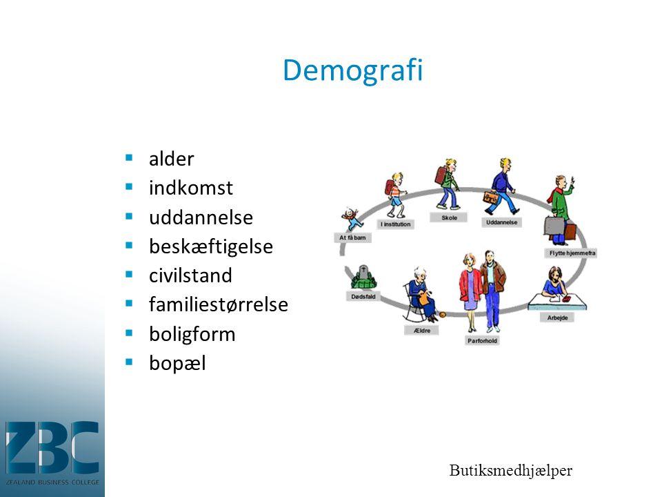 Demografi alder indkomst uddannelse beskæftigelse civilstand