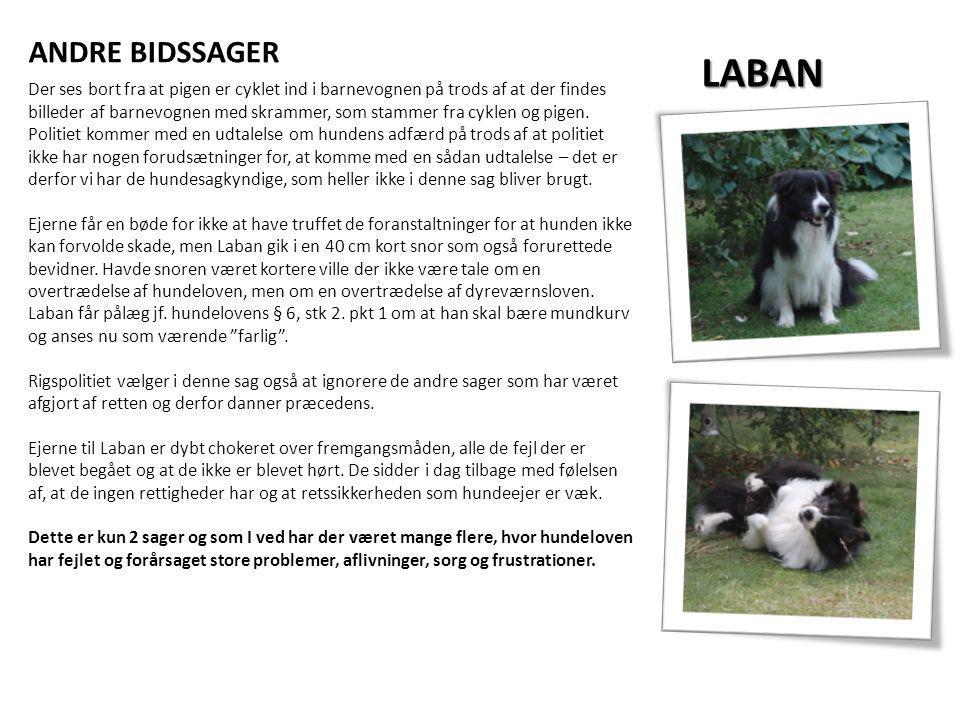 ANDRE BIDSSAGER LABAN.