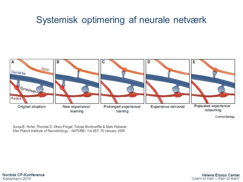 Systemisk optimering af neurale netværk