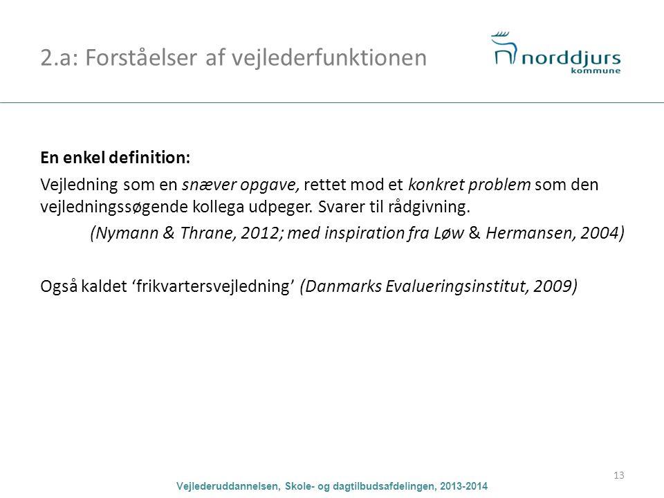 2.a: Forståelser af vejlederfunktionen
