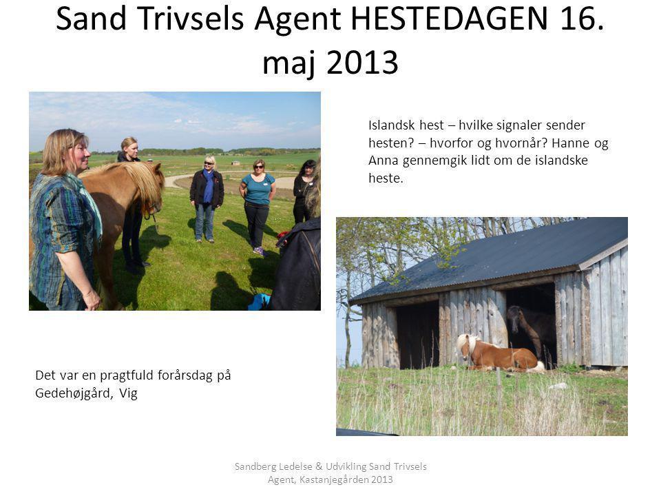 Sand Trivsels Agent HESTEDAGEN 16. maj 2013