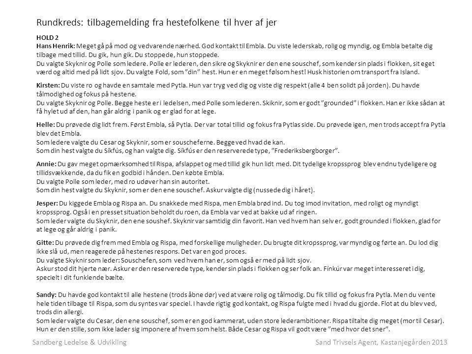 Sandberg Ledelse & Udvikling Sand Trivsels Agent, Kastanjegården 2013
