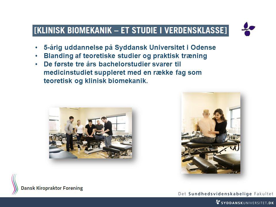 5-årig uddannelse på Syddansk Universitet i Odense