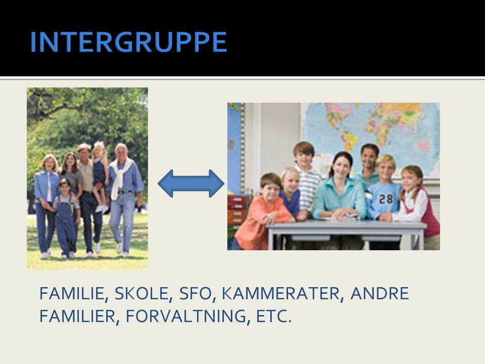 INTERGRUPPE FAMILIE, SKOLE, SFO, KAMMERATER, ANDRE FAMILIER, FORVALTNING, ETC.