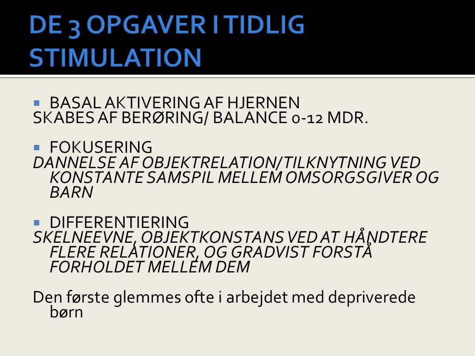 DE 3 OPGAVER I TIDLIG STIMULATION