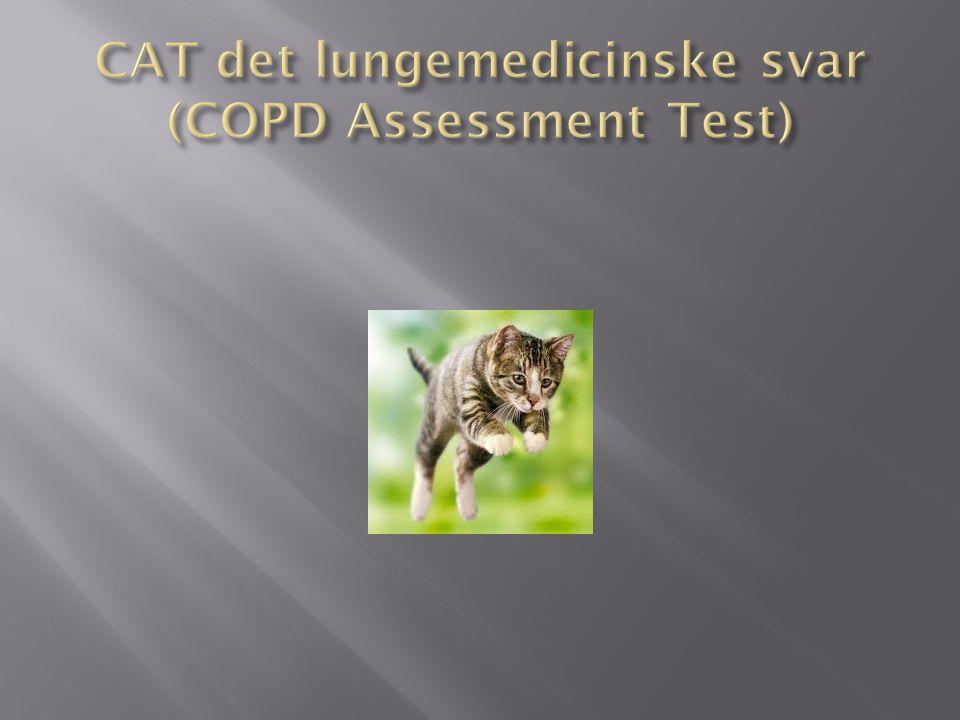 CAT det lungemedicinske svar (COPD Assessment Test)