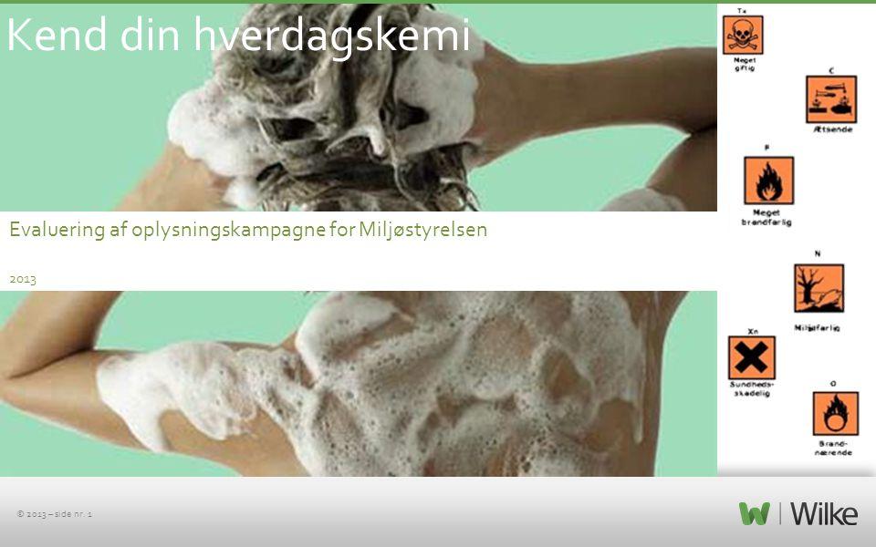 Kend din hverdagskemi Evaluering af oplysningskampagne for Miljøstyrelsen 2013