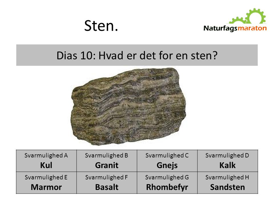 Dias 10: Hvad er det for en sten