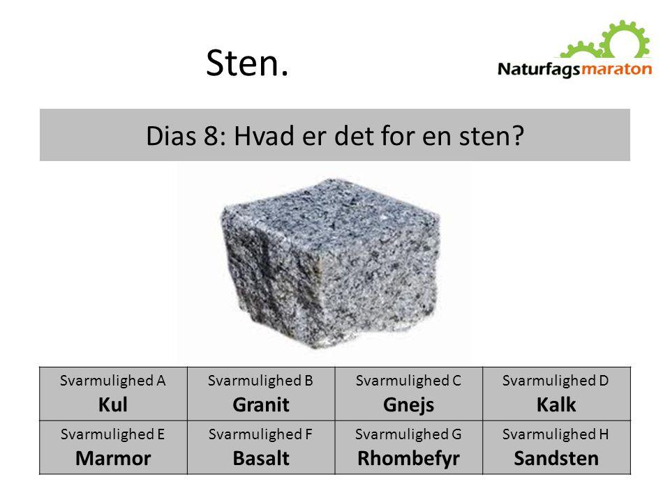 Dias 8: Hvad er det for en sten