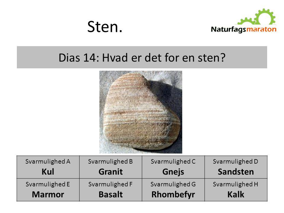 Dias 14: Hvad er det for en sten