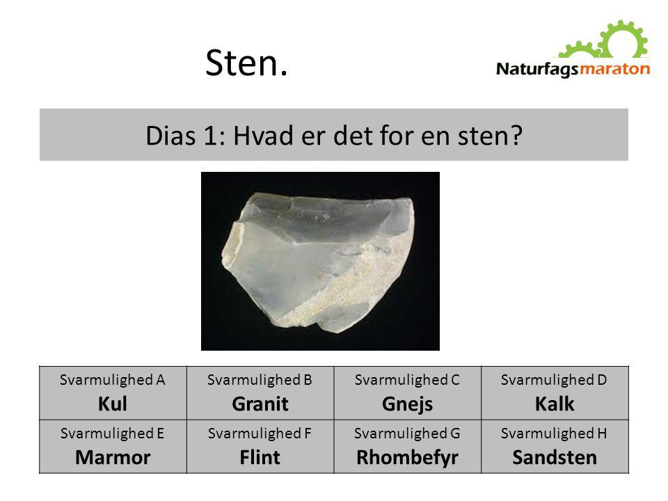 Dias 1: Hvad er det for en sten