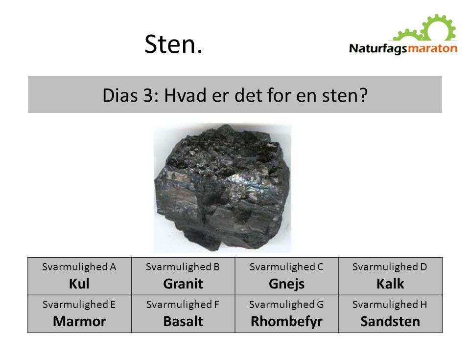 Dias 3: Hvad er det for en sten