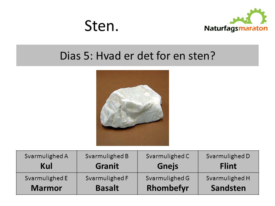 Dias 5: Hvad er det for en sten
