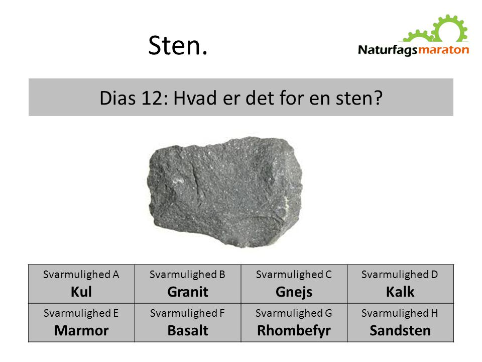 Dias 12: Hvad er det for en sten
