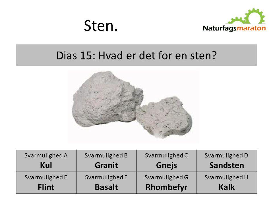 Dias 15: Hvad er det for en sten