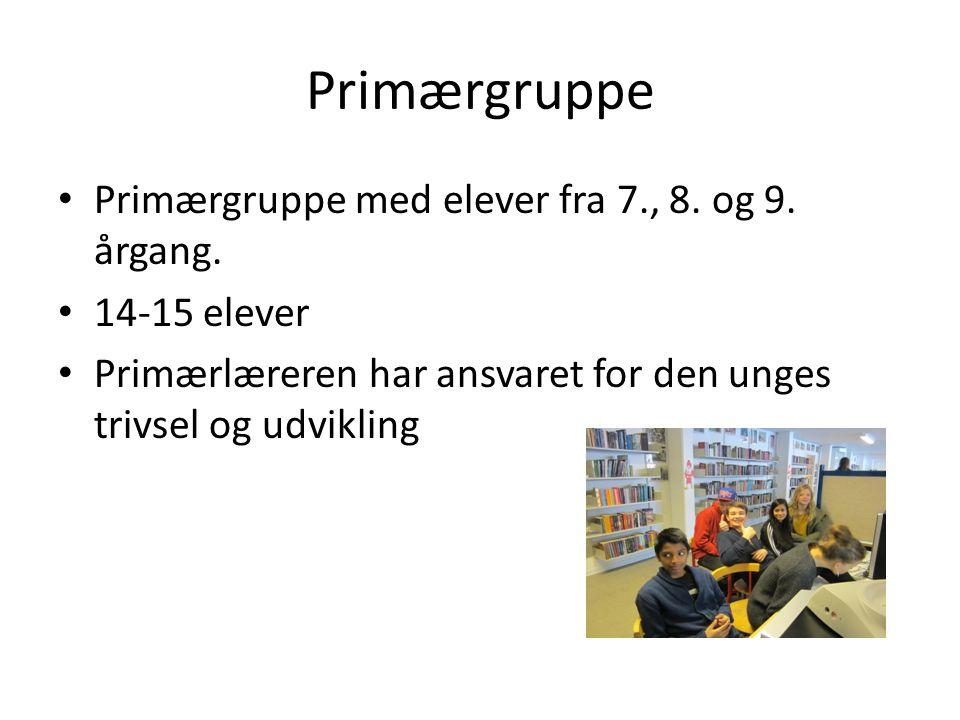 Primærgruppe Primærgruppe med elever fra 7., 8. og 9. årgang.