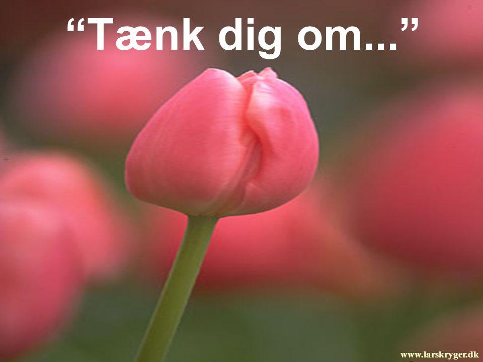 Tænk dig om... www.larskryger.dk