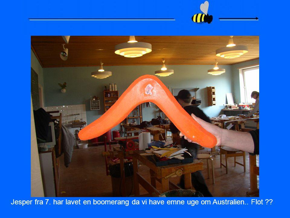 Jesper fra 7. har lavet en boomerang da vi have emne uge om Australien