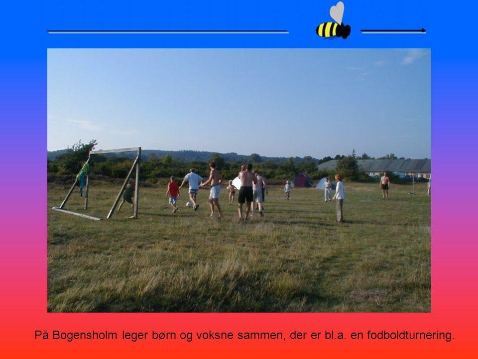 På Bogensholm leger børn og voksne sammen, der er bl. a
