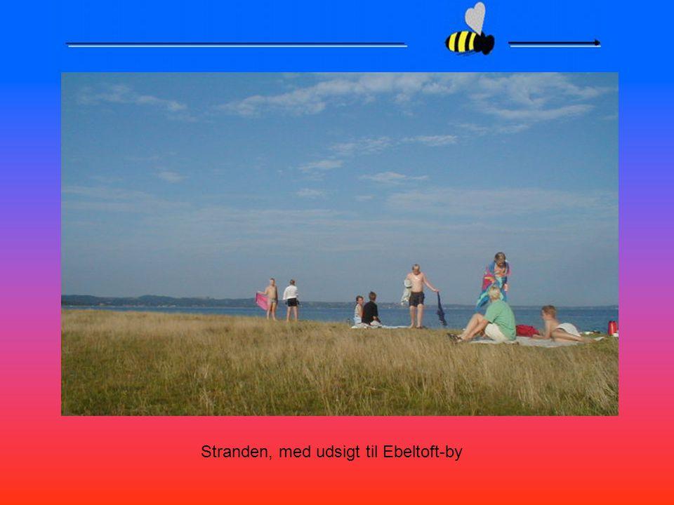 Stranden, med udsigt til Ebeltoft-by