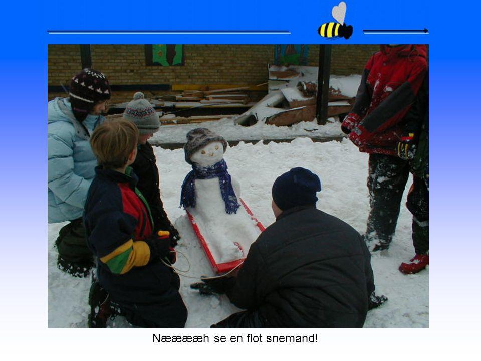 Nææææh se en flot snemand!
