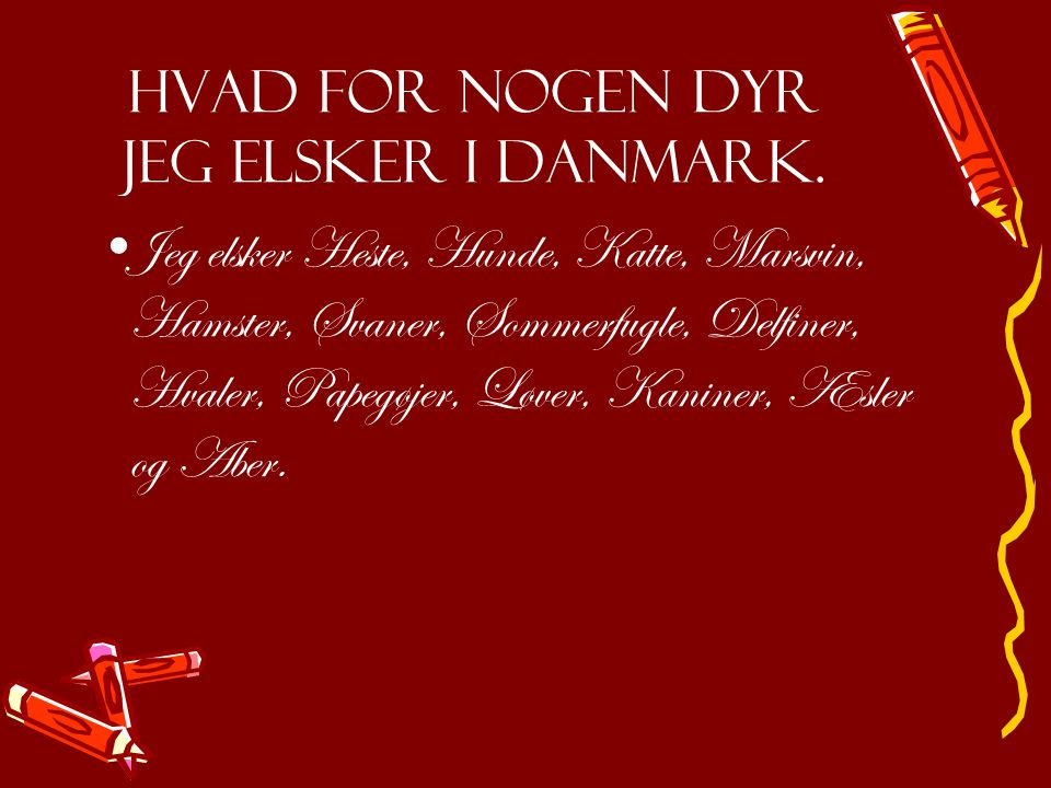 Hvad for nogen dyr jeg elsker i Danmark.