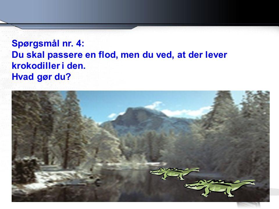 Spørgsmål nr. 4: Du skal passere en flod, men du ved, at der lever krokodiller i den. Hvad gør du
