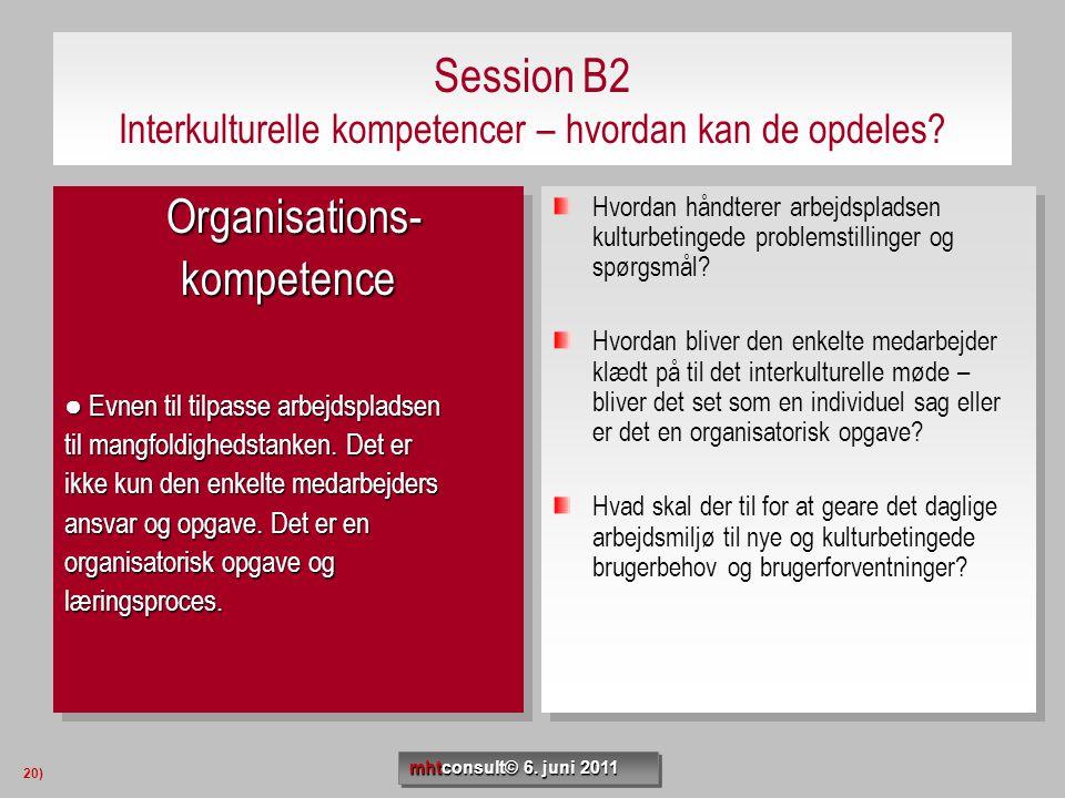 Session B2 Interkulturelle kompetencer – hvordan kan de opdeles