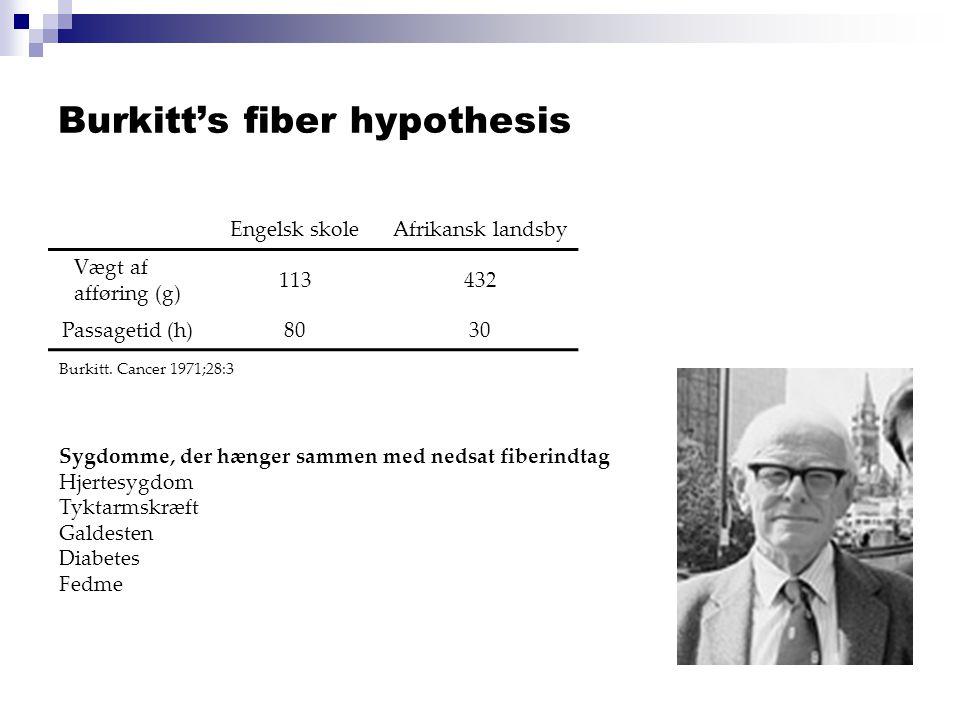 Burkitt's fiber hypothesis