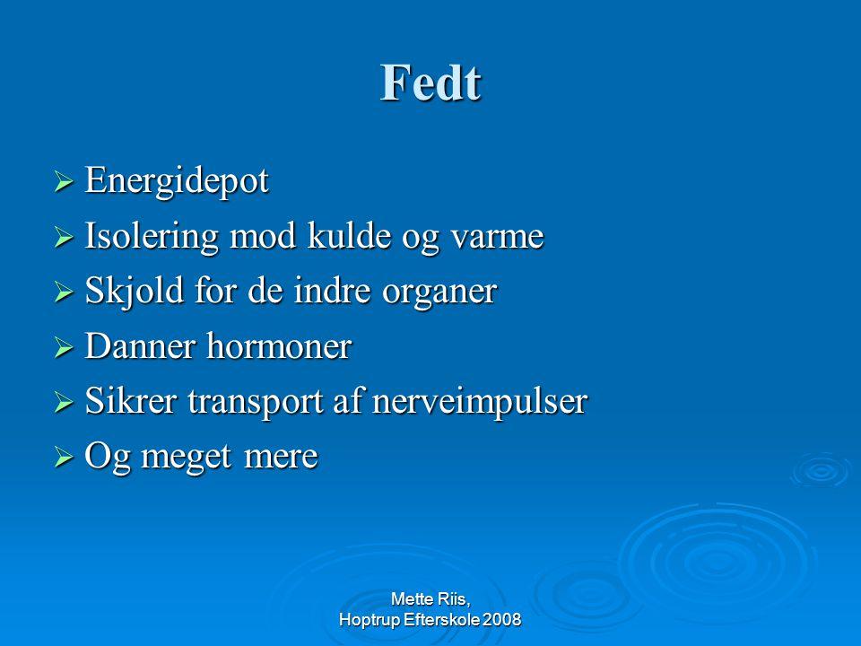 Mette Riis, Hoptrup Efterskole 2008