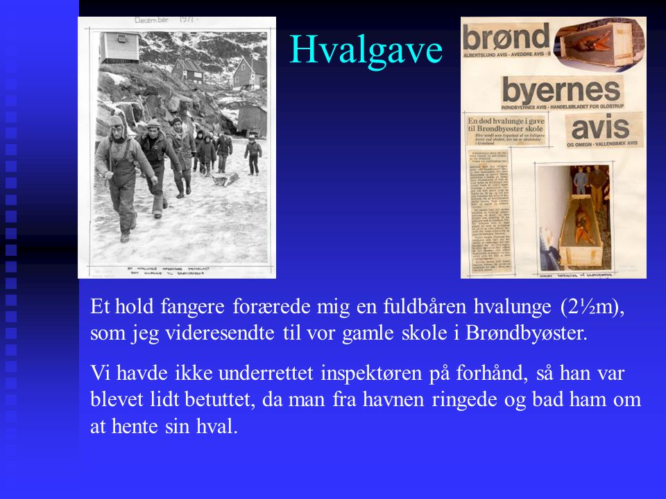Hvalgave Et hold fangere forærede mig en fuldbåren hvalunge (2½m), som jeg videresendte til vor gamle skole i Brøndbyøster.