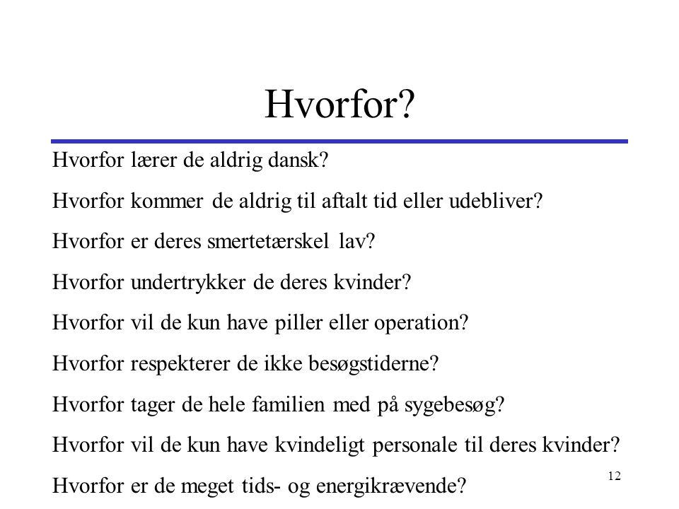 Hvorfor Hvorfor lærer de aldrig dansk