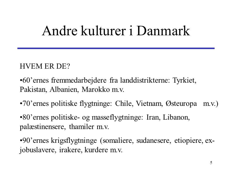 Andre kulturer i Danmark