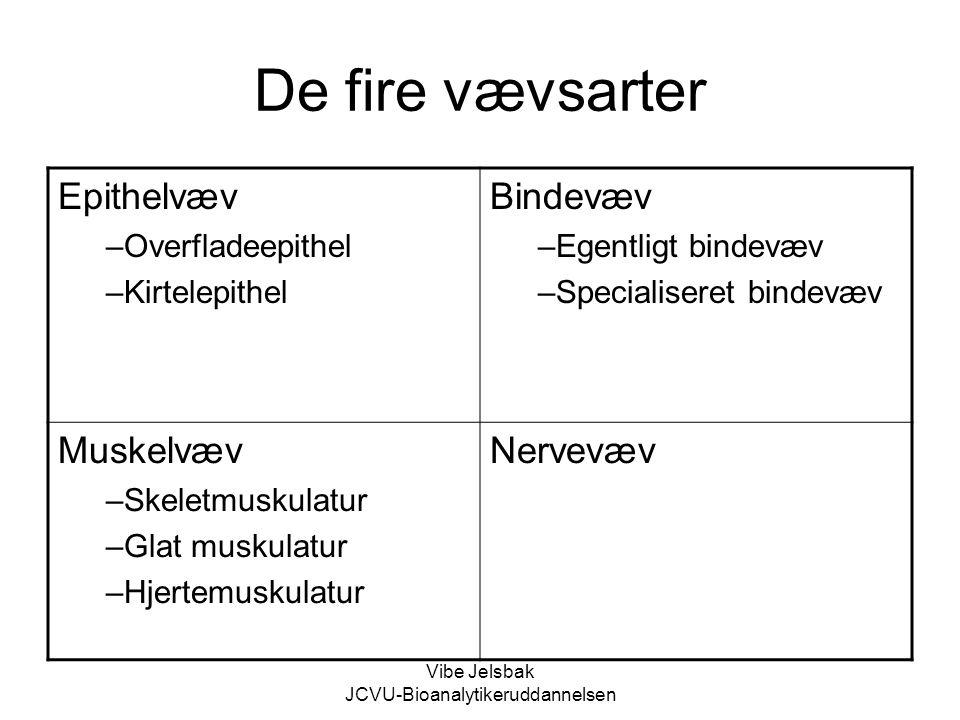 Vibe Jelsbak JCVU-Bioanalytikeruddannelsen