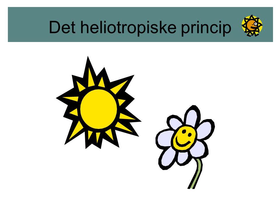 Det helitropiske princip
