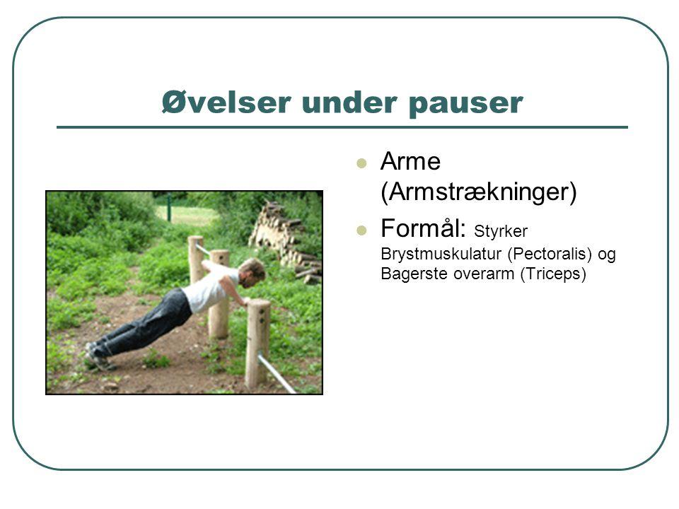 Øvelser under pauser Arme (Armstrækninger)