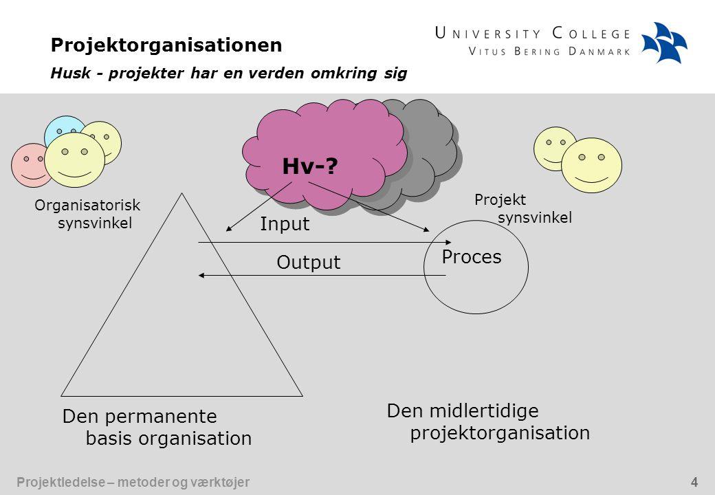 Projektorganisationen Husk - projekter har en verden omkring sig