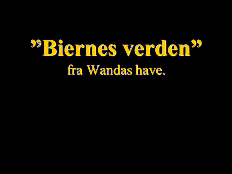 Biernes verden fra Wandas have.