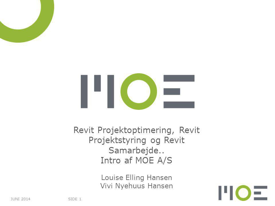 Revit Projektoptimering, Revit Projektstyring og Revit Samarbejde