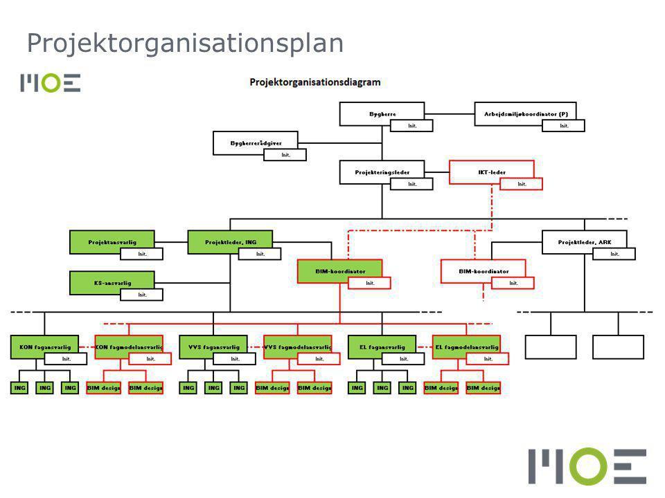Projektorganisationsplan