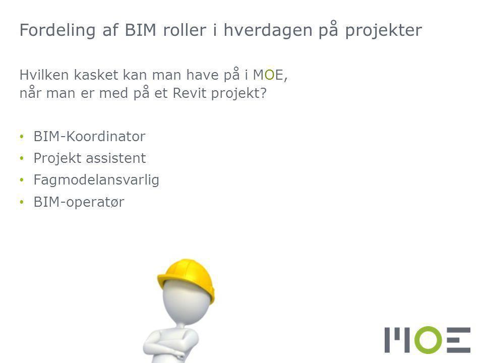 Fordeling af BIM roller i hverdagen på projekter