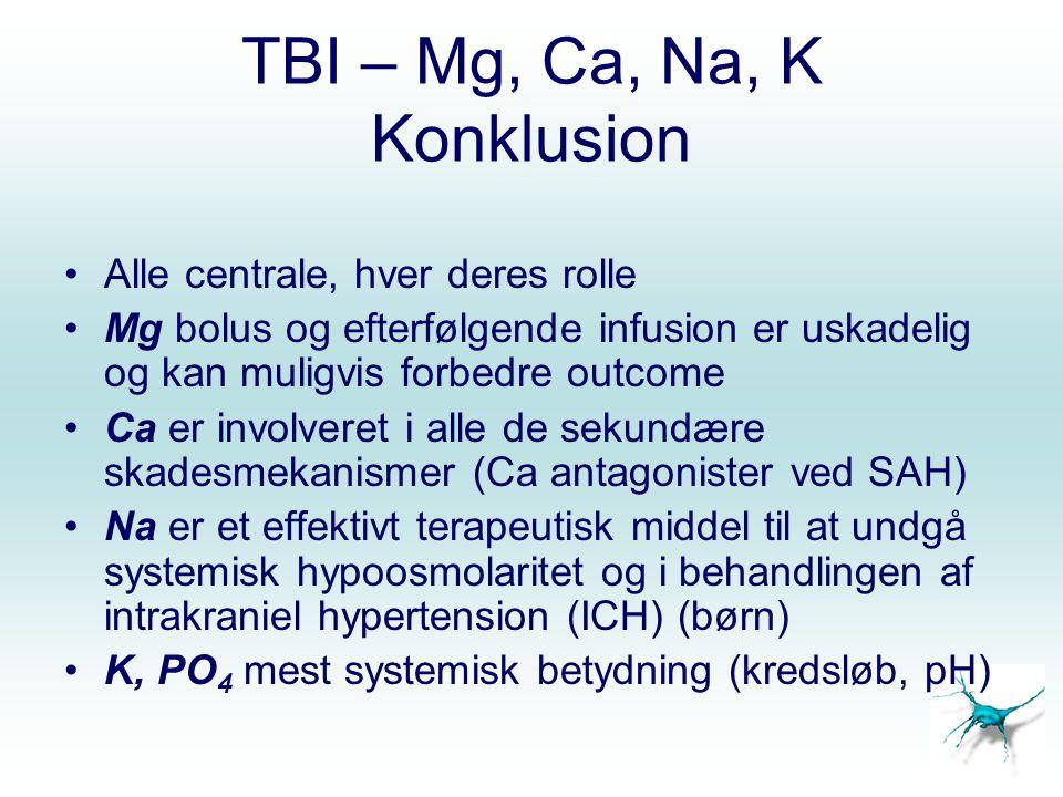 TBI – Mg, Ca, Na, K Konklusion