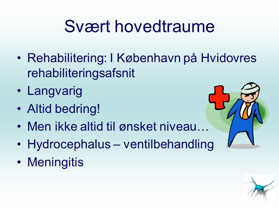 Svært hovedtraume Rehabilitering: I København på Hvidovres rehabiliteringsafsnit. Langvarig. Altid bedring!