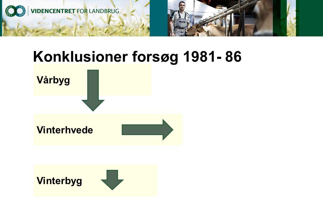Konklusioner forsøg 1981- 86 Vårbyg Vinterhvede Vinterbyg