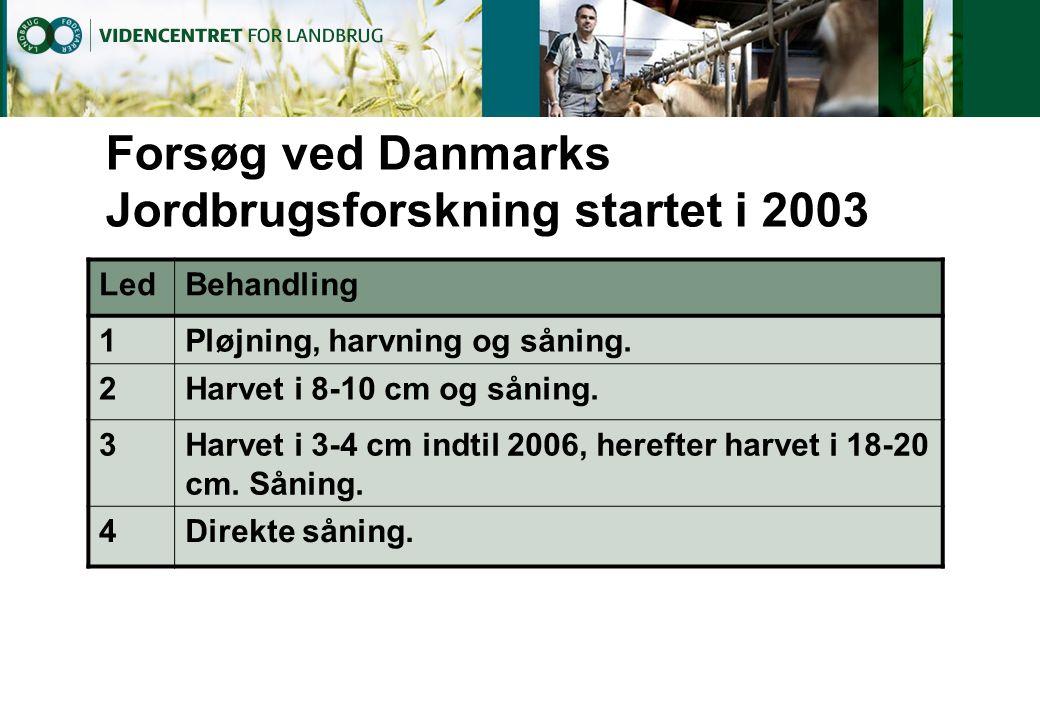 Forsøg ved Danmarks Jordbrugsforskning startet i 2003