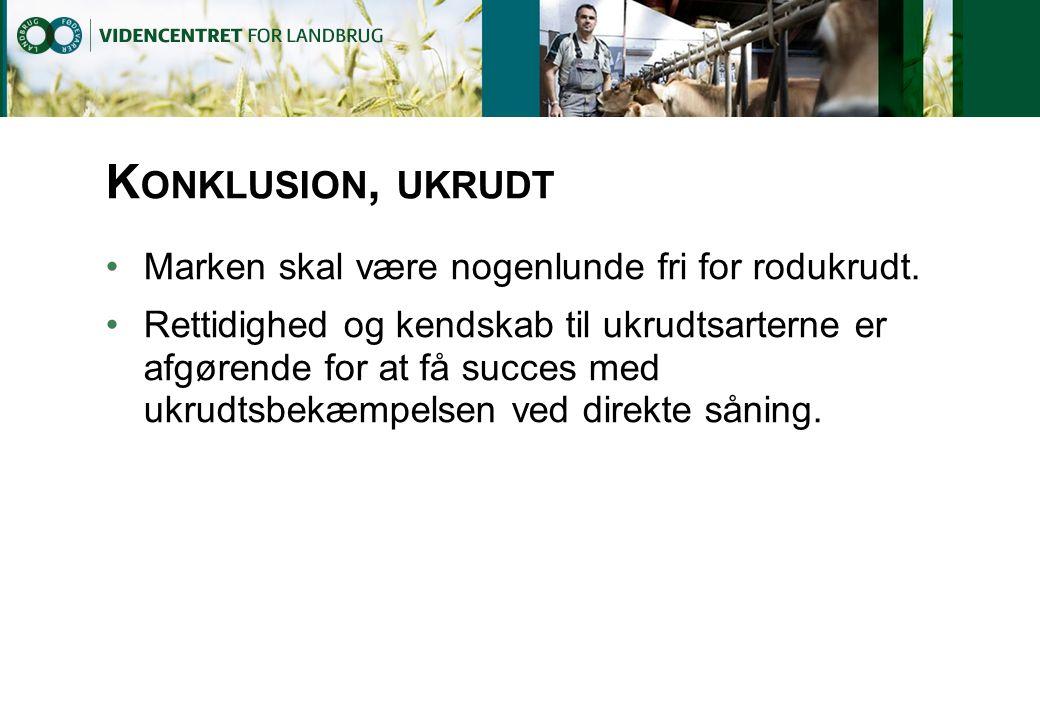 Konklusion, ukrudt Marken skal være nogenlunde fri for rodukrudt.
