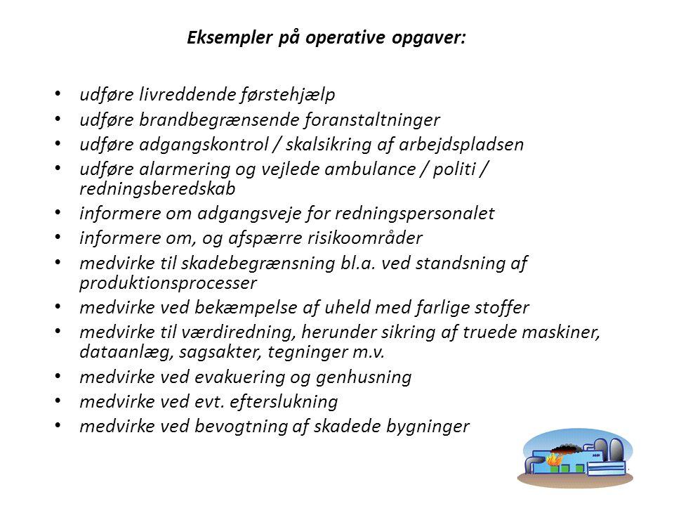 Eksempler på operative opgaver: